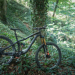 NS Bikes Snabb 29er – na plus