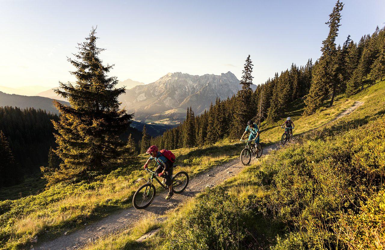 Bike Park Leogang rozbudowuje się na sezon 2019